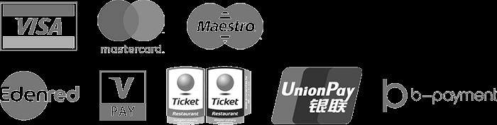 VISA, mastercard, Maestro, Edenred, V Pay, Ticket Restaurant, UnionPay, b-payment